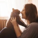 世界中で大人気!? 可愛すぎる猫「まる」の経歴と人気の秘密