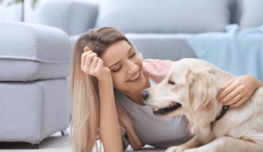 犬を飼うために必要な生涯費用や毎月かかるお金のこと