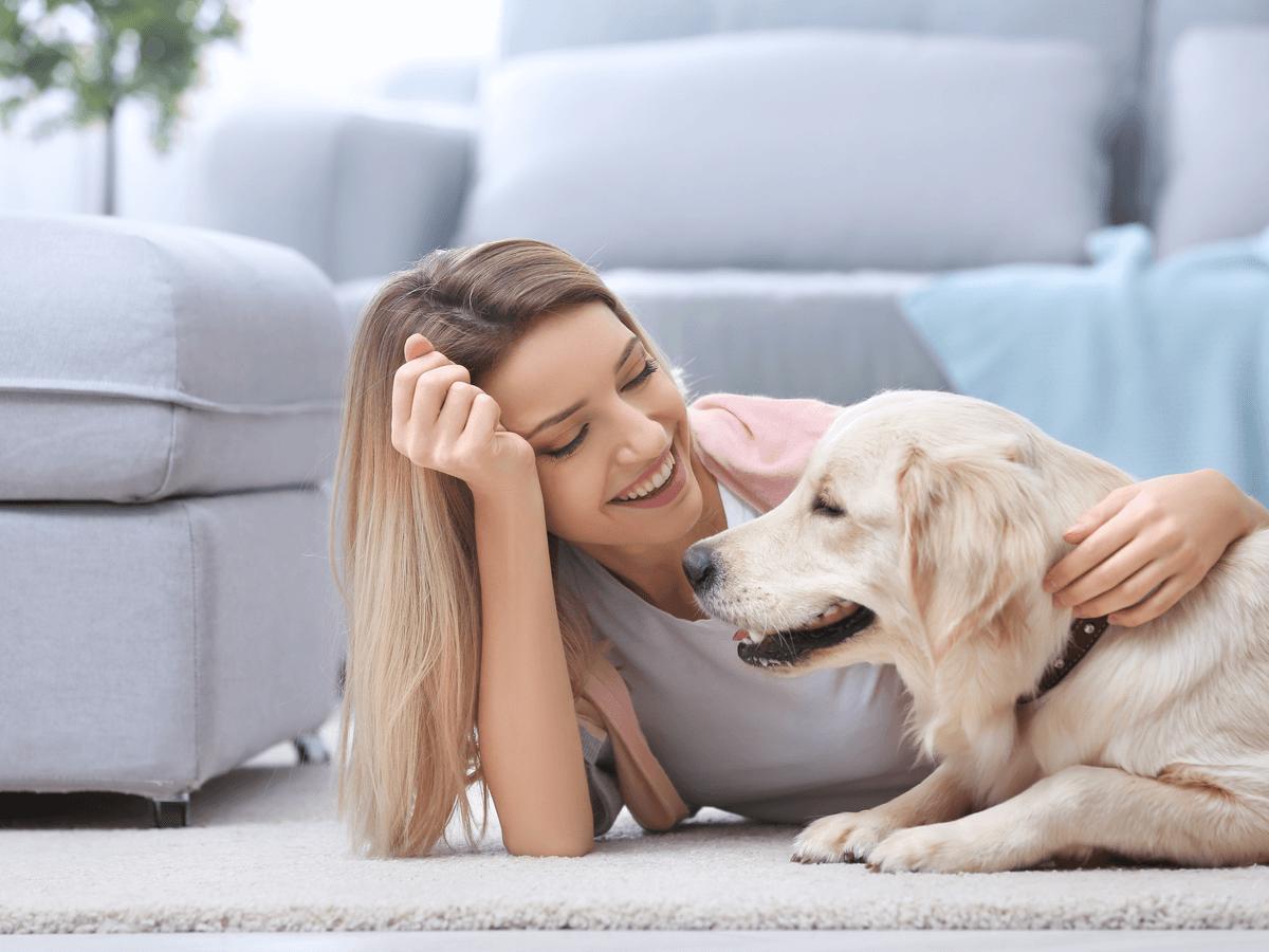 犬を飼うための費用ってどのくらい?