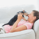 一人暮らしでペットは飼える?生活の注意点とおすすめの犬・猫の種類を紹介!