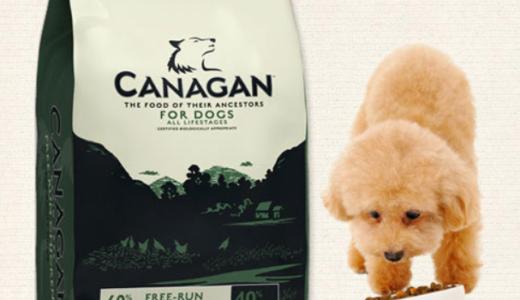 カナガンは犬にどんな効果があるの?一度は食べさせてみたい高級ドッグフードをご紹介