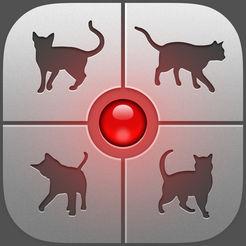 猫じゃらしアプリ「人猫語翻訳機」