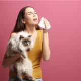 猫といるとアレルギー症状が出る原因と対処法