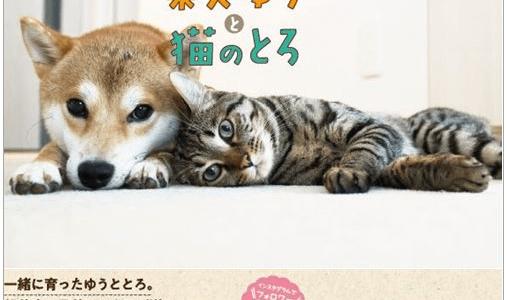 【発売中】SNSで話題のゆうとろが初の書籍化!『柴犬ゆうと猫のとろ』が気になる!