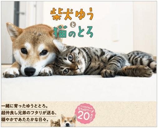 【8月4日発売開始】SNSで話題のゆうとろが初の書籍化!『柴犬ゆうと猫のとろ』が気になる!