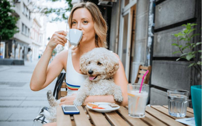 愛犬と一緒に楽しもう!東京でおすすめのドッグカフェ