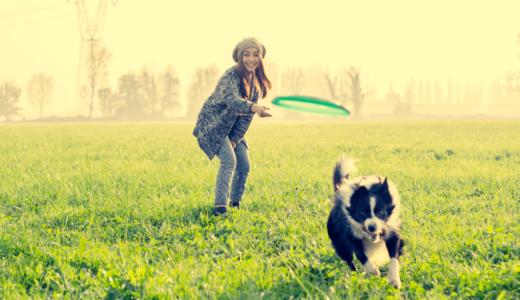東京にある犬とのふれあいスポット15選!一緒に過ごせるおすすめの場所を大公開