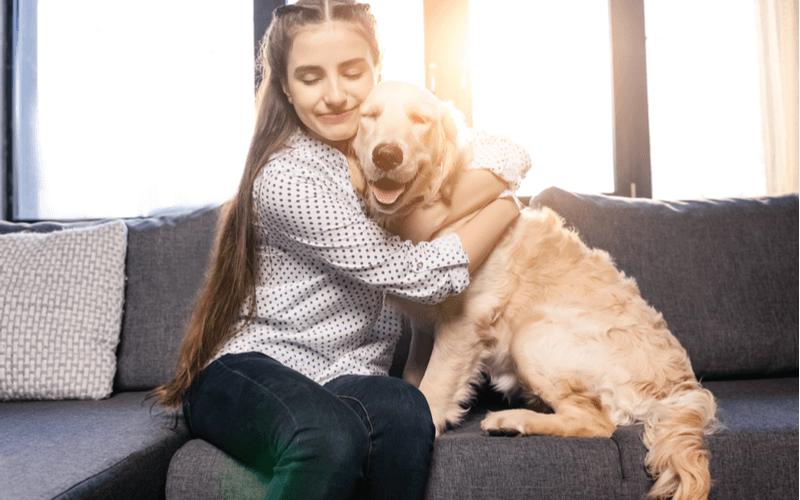 犬とふれあいたい!東京で犬と一緒に過ごせる場所15選