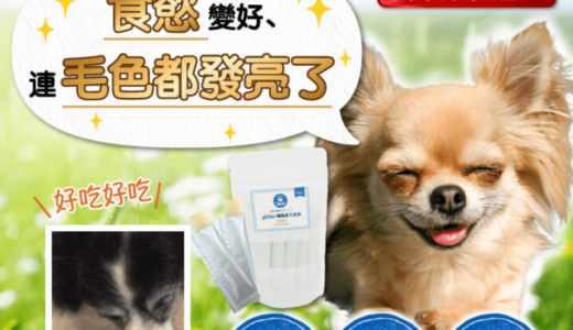 海外でも注目の日本国産犬用サプリ「ジュレ・ワン乳酸菌」!愛犬の皮膚・毛並み対策の助長に