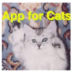 猫用アプリ ボール版 Google Play のアプリ