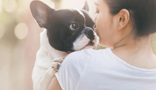 育犬ノイローゼとは?犬を飼うことで陥る症状や原因と4つの克服法は手放すしかない?
