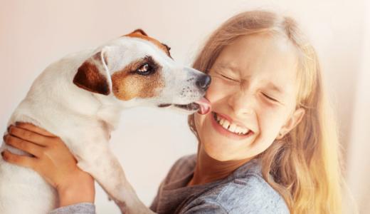 ペットセラピーとは?活躍する動物たちと期待できる4つの効果について