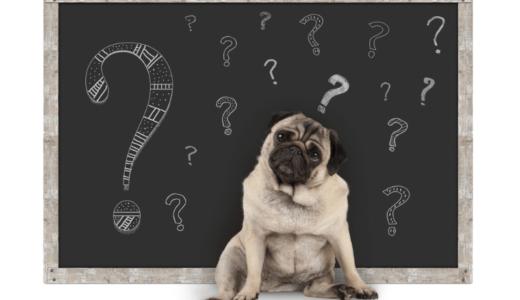 犬がこんにゃくを食べても大丈夫?ダイエット効果が期待されているその理由とは