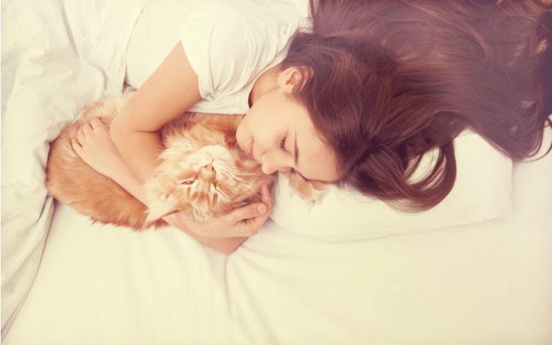 かわいくておかしい猫の寝相 寝相でわかる飼い主さんへの信頼度