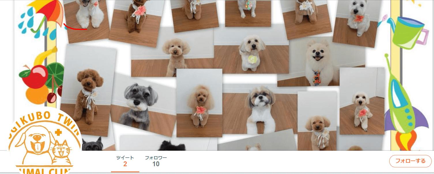 荻窪ツイン動物病院・トリミングサロン ogikubotwinah さん Twitter