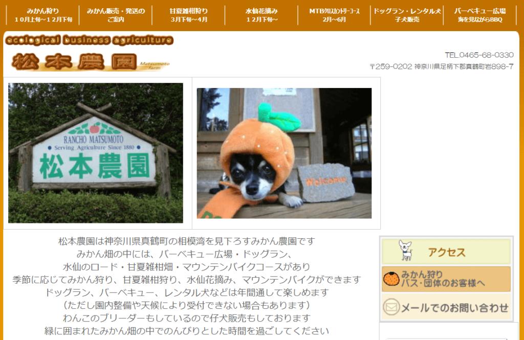ペットと旅行を楽しもう!関東でおすすめのスポット15選とペットと泊まれる宿17選