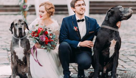 東京にはペットと一緒に結婚式を挙げられる場所がある!?おすすめの式場10選
