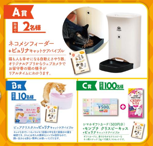保護猫 ネコダスケ 1投稿1円