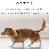 犬用ブーツ パウテクト