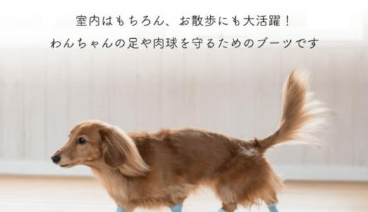 犬用ブーツ「パウテクト」には利点がいっぱい!しもやけ・火傷の予防やカサカサ対策にも!