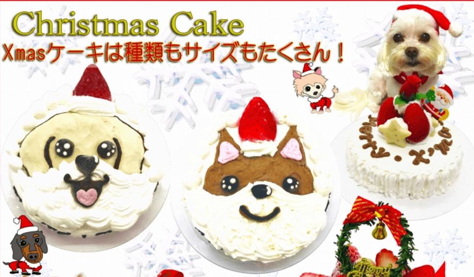 犬 わんちゃん用クリスマスケーキ