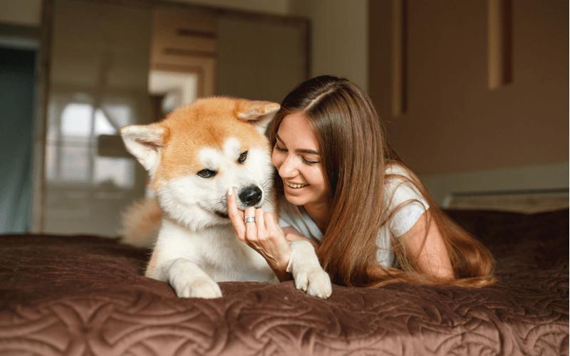 愛犬とコミュニケーションをとる