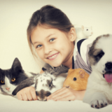飼いやすいペットが知りたい!一人暮らしや子どもがいても飼えるかわいいペットを紹介!