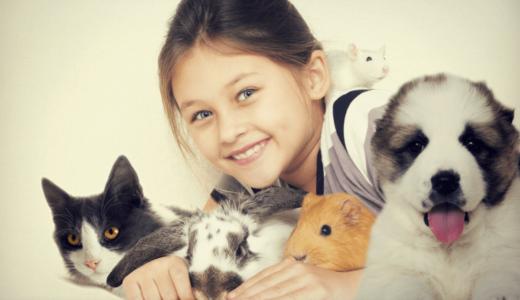 飼いやすいペットで一人暮らしや子どもがいる家庭にもおすすめ16選!爬虫類や両生類の珍しい子が人気?