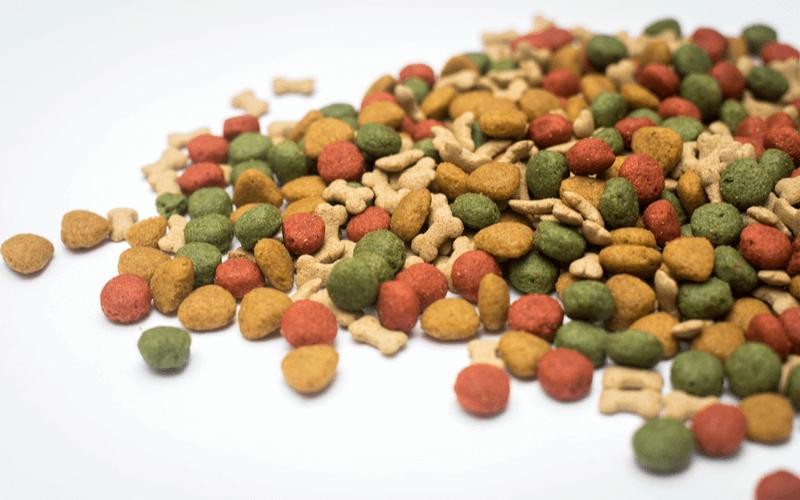 総合栄養食 キャットフード