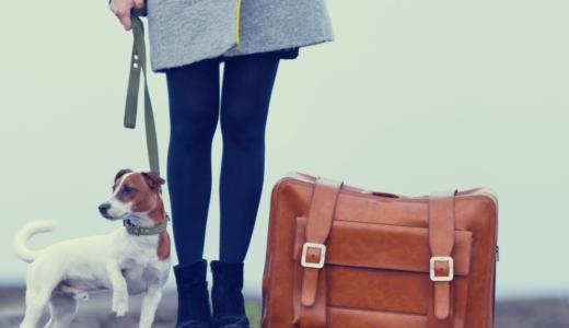 【2018年版】ペットと泊まれる宿30選!編集部が選ぶおすすめの旅行先を大公開!
