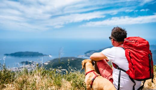 ペットと旅行する際の5つのポイントとは?関東・関西のおすすめスポット6選