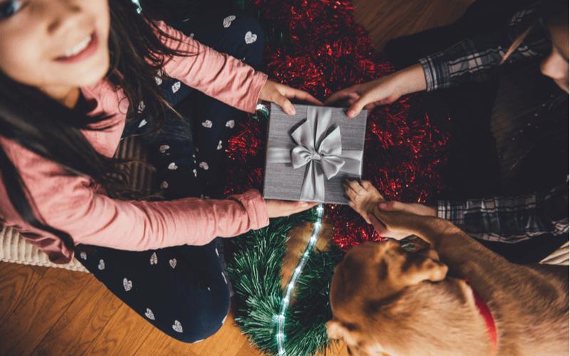 愛犬とクリスマスプレゼント