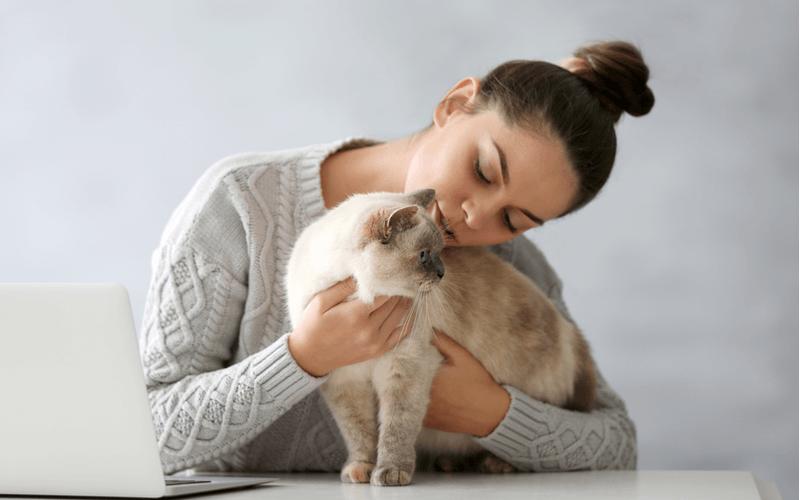 猫のすり傷の処置方法は?肉球や鼻、足など部位ごとにすり傷の対処法を解説