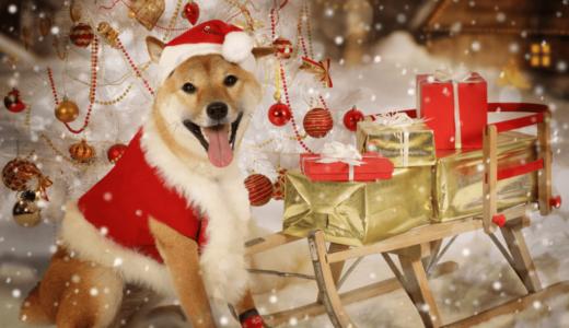 愛犬のクリスマスはこの服で決まり!おすすめのコスチューム6選と手作りの方法をご紹介