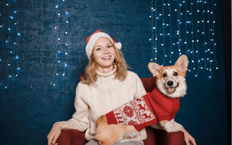 愛犬とクリスマス