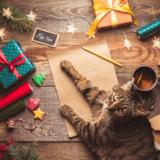 猫 クリスマス プレゼント