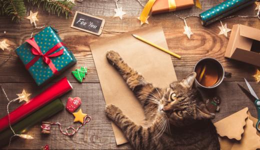 愛猫へのクリスマスプレゼントにおすすめ商品14選!楽しいイベント準備の参考に