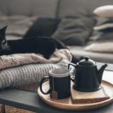 梅田 猫カフェ