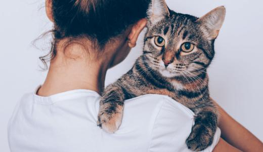 愛猫が抱っこを嫌がると悩む飼い主必見!抱っこ好きにする方法やおすすめの抱っこ紐3選をご紹介