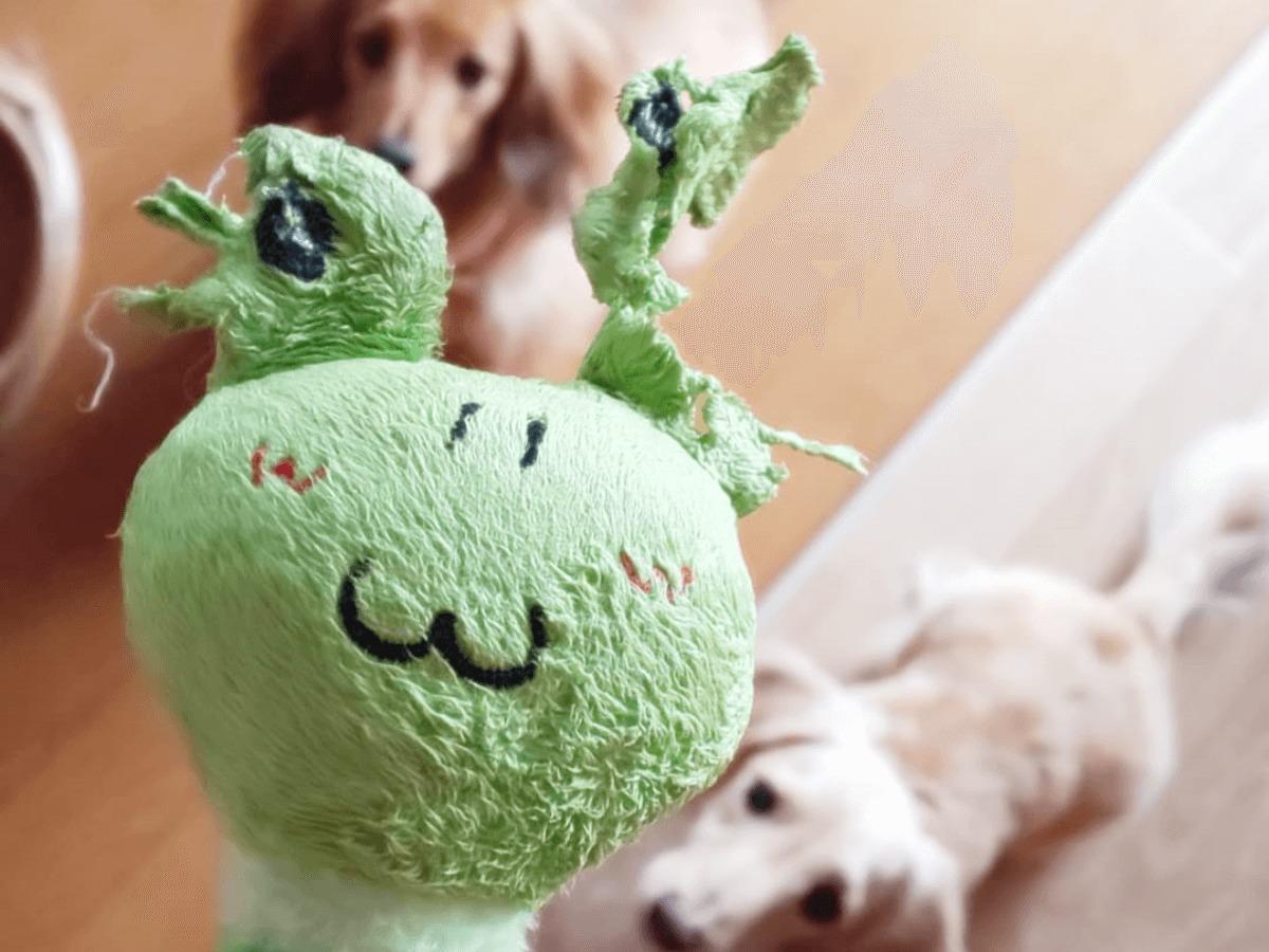 おもちゃ 犬