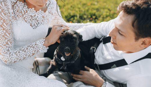 埼玉でペットと一緒に結婚式を挙げよう!おすすめの式場24選