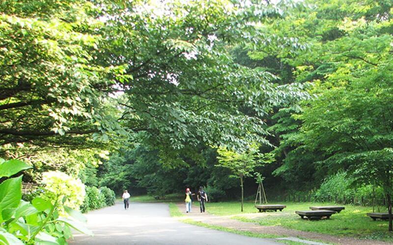 小山内裏公園