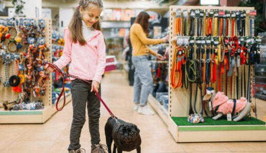 ペットのことならアミーゴにお任せ!全国に店舗展開している大手ペットショップを大公開