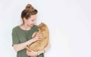 猫の寿命は15歳!?猫が持つ特徴と寿命の因果関係と長生きさせるためのコツ4つ
