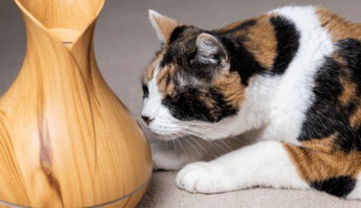 猫にアロマは危険!使用した際の症状や安全なアロマオイルもご紹介