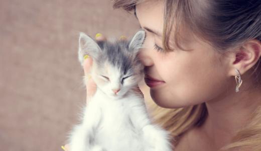 猫のニオイって本当はいい匂い!?猫臭いと言われたときの対策6選