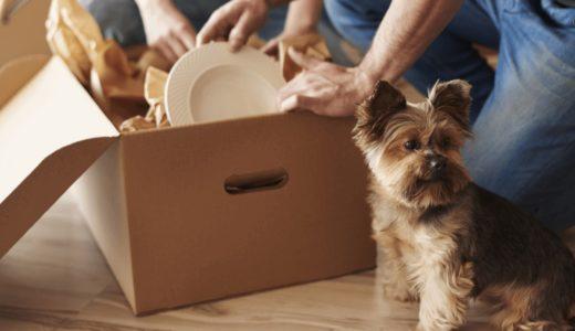 ペットと暮らせる賃貸物件サイトとトラブル回避方法について